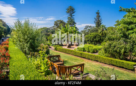 Australia, New South Wales, Sydney, Royal Botanic Garden, view of the Herb Gardens - Stock Photo