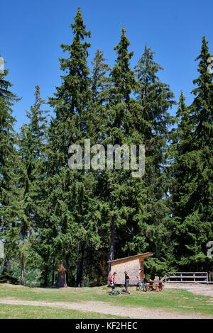 Statiunea Muntele Băișorii (Mountain resort Băişorii) - Stock Photo