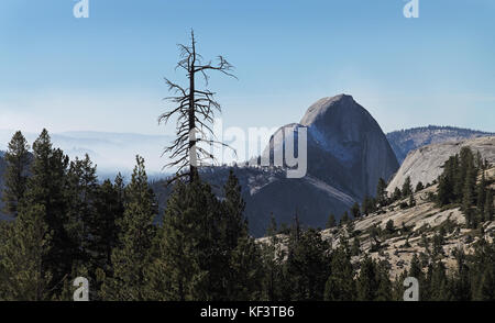 Half dome seen from behind at Olmsted Point , Yosemite National Park, California, USA. - Stock Photo