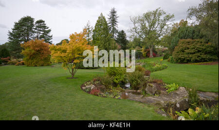 The beck RHS [Harlow Carr] Gardens Harrogate Stock Photo: 26221228 ...