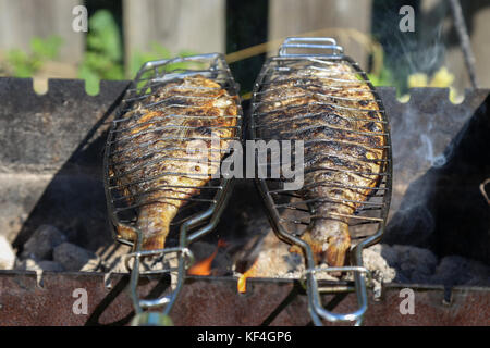 how to grill fresh fish