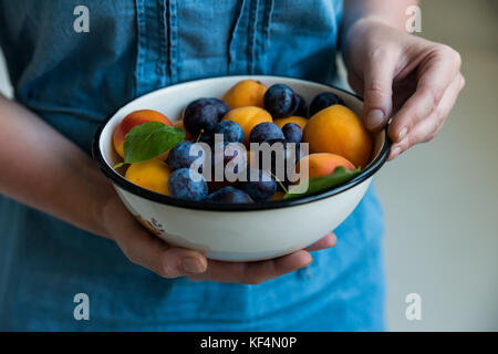 Close up woman's hands with fresh stone fruits plums and apricots healthy diet concept - Stock Photo