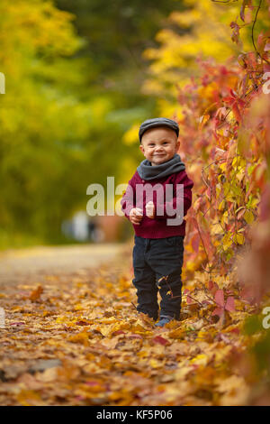 Little happy child boy wearing hat, scarf and sweater goes in park on background of colorful autumn leaves. - Stock Photo