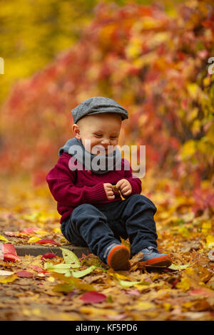 Little smiling child boy wearing hat, scarf and sweater sits in park among fallen leaves and holds yellow leaf in - Stock Photo
