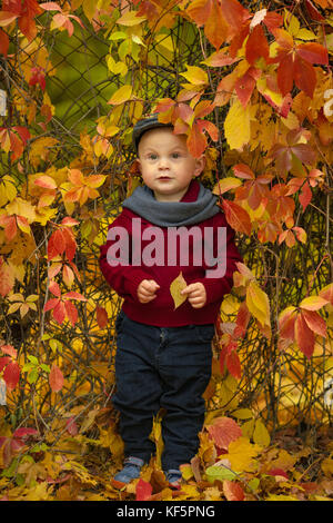 Little child boy wearing hat, scarf and sweater stands near grid in park and holds yellow leaf in his hand on background - Stock Photo