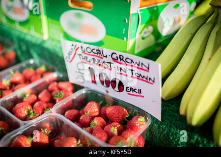 Close up of a hand written sign on an English market stall stating Locally Grown, the best in town, only £1,00 for - Stock Photo