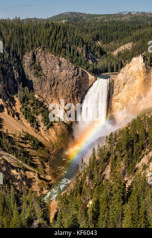Rainbow at the Lower Falls of the Yellowstone River at the Grand Canyon of the Yellowstone from Lookout Point in - Stock Photo