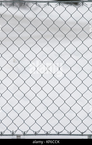 Close up of a metal gate with chicken wire in snow Stock Photo ...