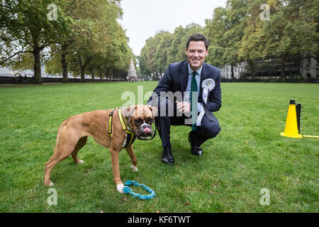 London, UK. 26th Oct, 2017. Alex Chalk Conservative MP with rescue dog Evie, a Dobermann Cross at the 25th Annual - Stock Photo