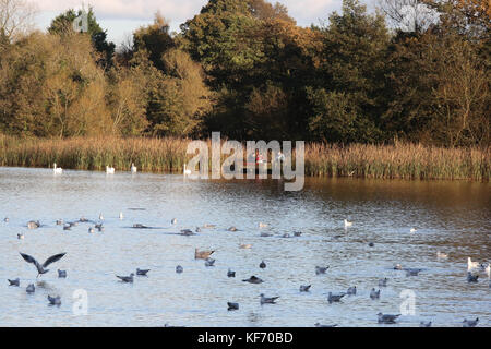 Lurgan, Northern Ireland, UK. 26 October 2017. High pressure at this time of year means sunny days, calm conditions - Stock Photo