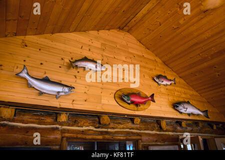 USA, Alaska, Redoubt Bay, Big River Lake, the cabins at Redoubt Bay Lodge - Stock Photo