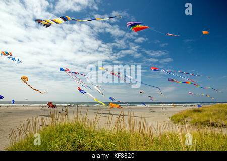 USA, Washington State, Long Beach Peninsula, large kites fly in the wind at the International Kite Festival - Stock Photo