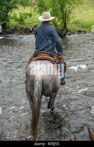 USA, Oregon, Joseph, Cowboy Todd Nash rides though Big Sheep Creek after moving cattle in the rain, Northeast Oregon - Stock Photo