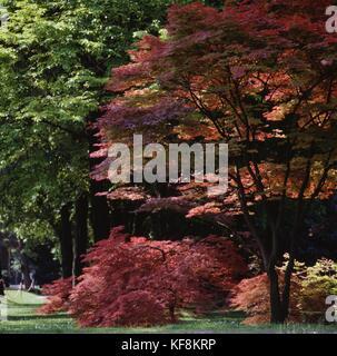 Sigurta Garden Park, Valeggio sul Mincio, Veneto, Italy. - Stock Photo