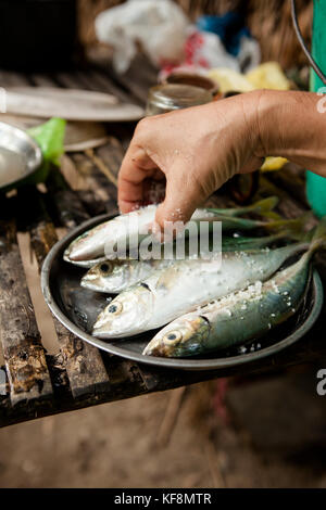 PHILIPPINES, Palawan, Barangay region, dinner and fresh ingredients are being prepared and cooked over an open fire - Stock Photo