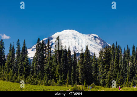 Mt. Rainier rising above trees on the Mather Memorial Parkway in Mount Rainier National Park Washington in the Umited - Stock Photo