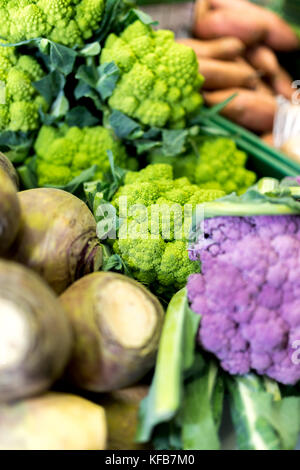 Close up of ripe and vibrant green Romanesco vegetables behind purple cauliflowers and swedes and on a market stall - Stock Photo
