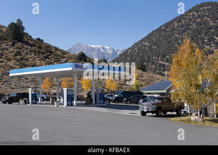 The Tioga gas mart and the famous Whoa nellie deli at  the mobil gas station on the corner of highways 395 & 120 - Stock Photo