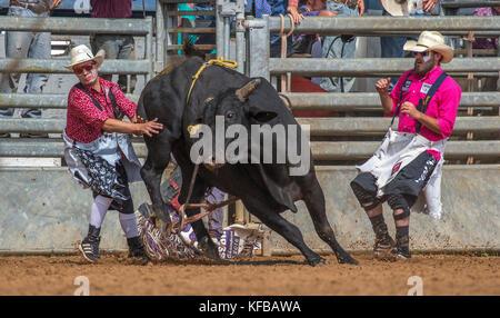 Rodeo Clown Stock Photo 68619804 Alamy