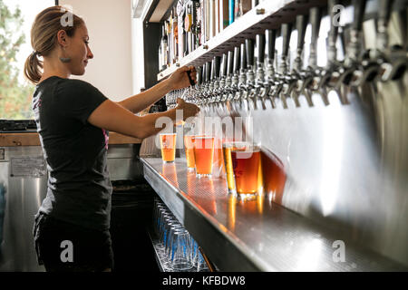USA, Oregon, Bend, Pacific Pizza and Brew, bartender pouring pint glas of brew beer - Stock Photo