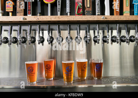 USA, Oregon, Bend, Pacific Pizza and Brew, pint glasses of brew beer - Stock Photo