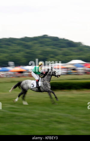 USA, Tennessee, Nashville, Iroquois Steeplechase, a horse and jockey warm up before race number five - Stock Photo