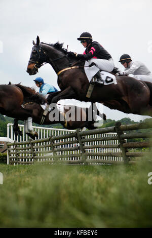 USA, Tennessee, Nashville, Iroquois Steeplechase, jockeys and their horses getting air over a jump during the Timber - Stock Photo