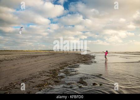 USA, Washington State, Long Beach Peninsula, International Kite Festival, young man flies a power kite at the edge - Stock Photo