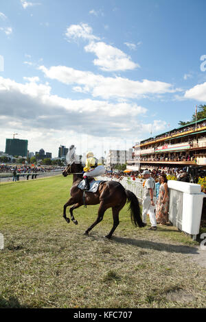 MAURITIUS; Port Louis; an international horse race draws thousands at Champ de Mars Race Cource; International Jockey - Stock Photo
