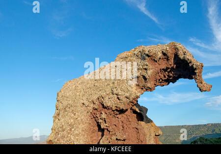 Italy, Sardinia, Olbia Tempio Province, Multeddu, Roccia dell'Elefante, dark trachyte block carved by the wind like - Stock Photo