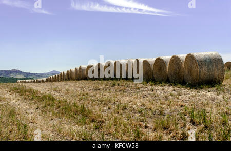 Hay bales in field,Orcia valley,Tuscany,Italy,2017. - Stock Photo