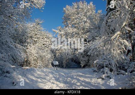 Southborough Common in Snow - Stock Photo