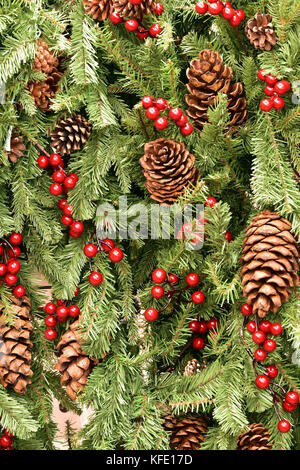 Christmas decorations in the form of pine and fir cones with holly and red berries hanging on an xmas tree for the - Stock Photo