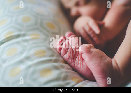 Newborn human baby asleep on a pillow - Stock Photo