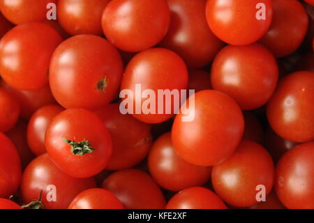Picking tomatoes. Tomato and raspberry cocktail. Vegetables. - Stock Photo