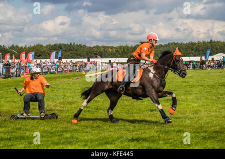 Horseboarding at Cheshire and Country fair Tabley Showground Cheshire UK - Stock Photo