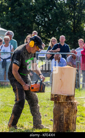 The 13th English open chainsaw carving competition at Cheshire Game and Country fair Cheshire County Showground - Stock Photo