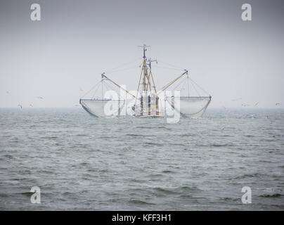 A shrimp boat is fishing the Northern Sea near the German island of Langeoog in the Wadden Sea - Stock Photo