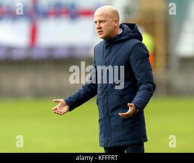 Budapest, Hungary. 28th Oct, 2017. BUDAPEST, HUNGARY - OCTOBER 28: Head coach Marko Nikolic of Videoton FC reacts - Stock Photo