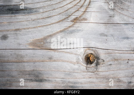 Rustic weathered grey pine wood plank background with knots and nail holes - Stock Photo