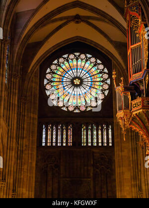 Pipe organ and rose window, Strasbourg Cathedral - Stock Photo