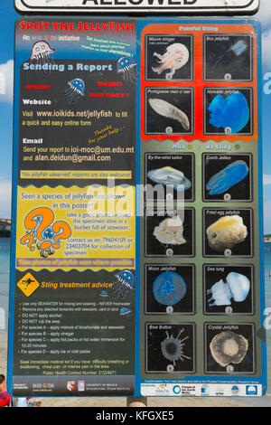 Information signs warning bathers of the various types of poisonous jellyfish that can be found in the sea around - Stock Photo
