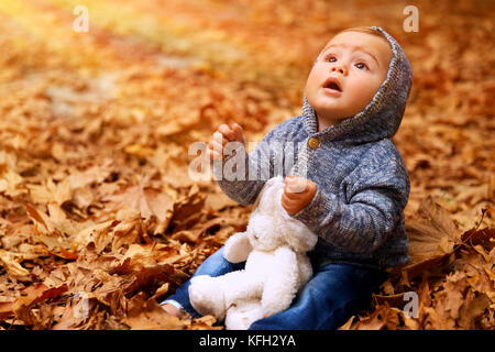 Little boy sitting on the ground covered with dry leaves in the park, with wonder looking up to the sun, playing - Stock Photo