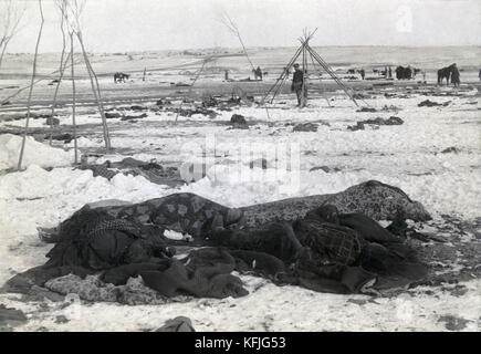 'Big Foot's camp three weeks after Wounded Knee Massacre; with bodies of four Lakota Sioux wrapped in blankets in - Stock Photo