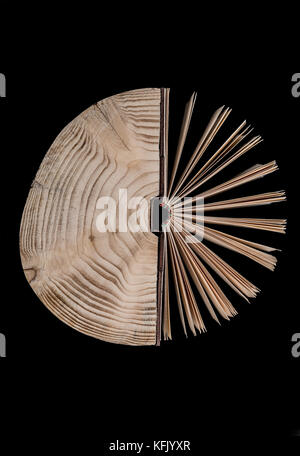 Conceptual image about the cross section of the tree trunk and book on black background. - Stock Photo