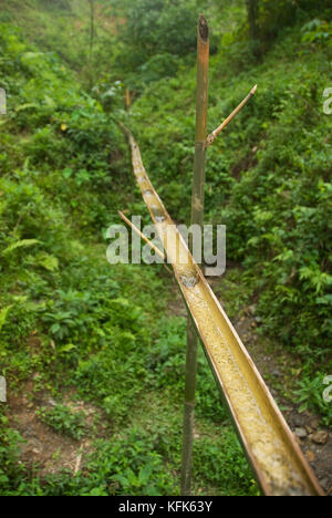 An aqueduct made of bamboo carries water from a small creek to a jug for local residents to collect.  Rainforest - Stock Photo
