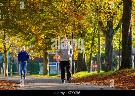 Dorchester, Dorset, UK. 30th Oct, 2017. UK Weather. Pedestrians walks along South Walks in Dorchester in Dorset - Stock Photo