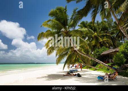The Seychelles, Praslin, Anse Volbert, beach, tourists sunbathing in shade of palm trees - Stock Photo
