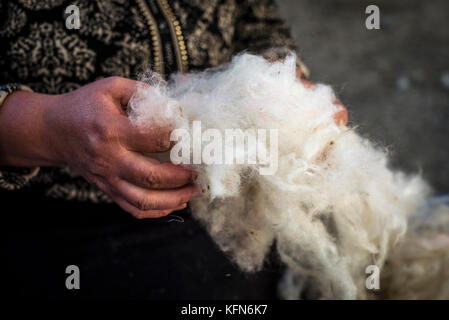 Daily life in the highest village of Azerbaijan. A woman is cleaning and scratching wool in her yard in Khinalig - Stock Photo