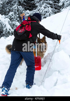 Rescuer from Mountain rescue service at Red Cross organization participates in a training with his dog. Both men - Stock Photo